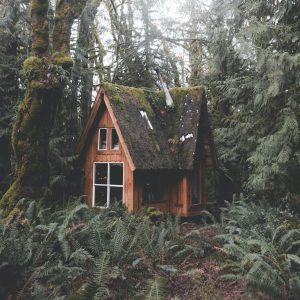 Oregon Tiny House